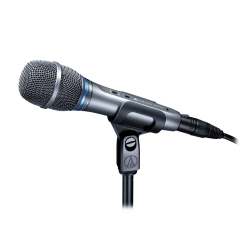 AE3300 Live Vocal Mic Condenser Cardioid